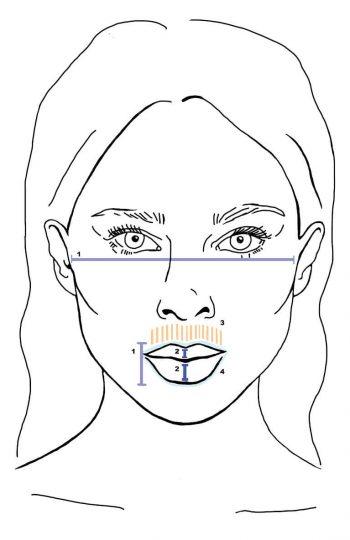 lippen gebieden 2